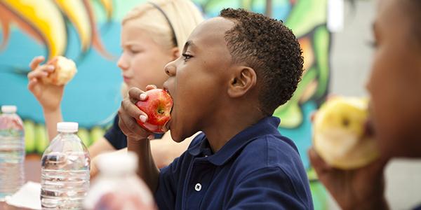 600X300 KID EATING APPLE stock.jpg
